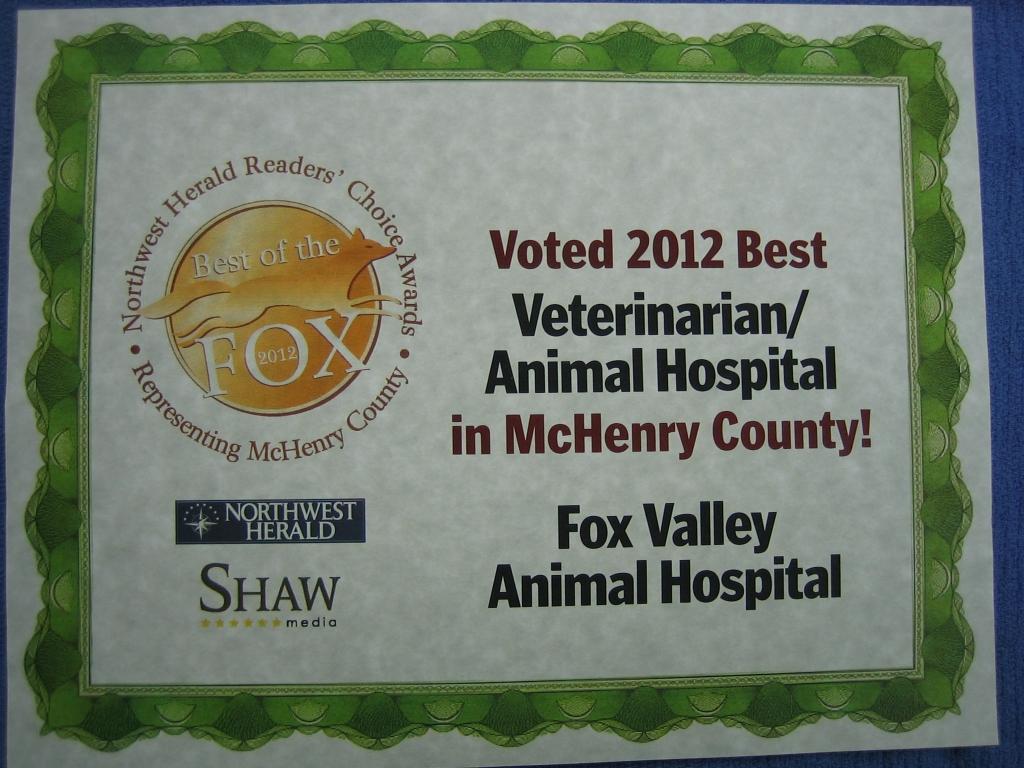 Veterinary Hospitals Mchenry County